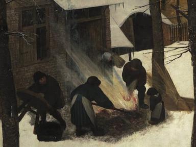Bruegelv3